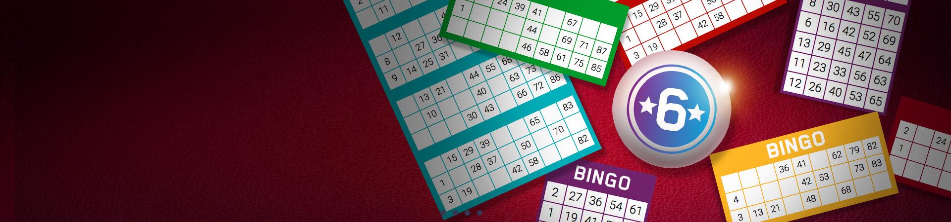 Bingo Mobil2